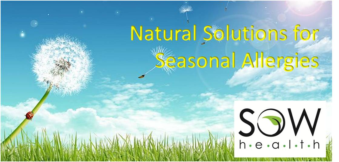Treat your Seasonal Allergies Naturally